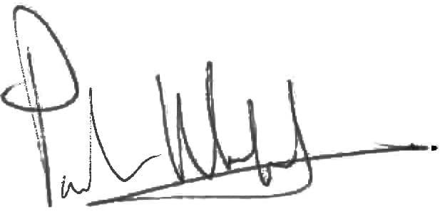 Paula signatur